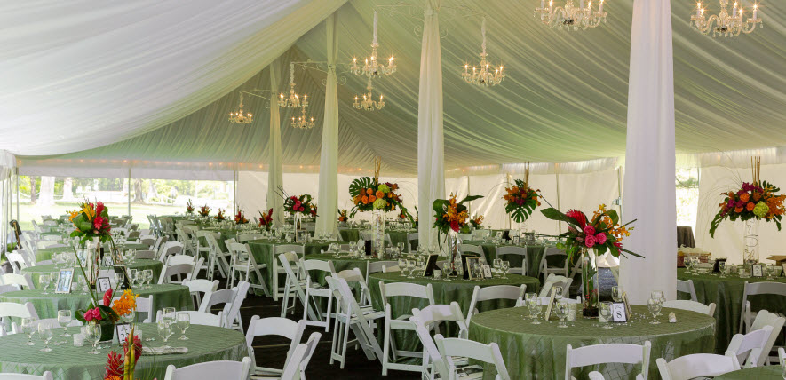 Party Rental